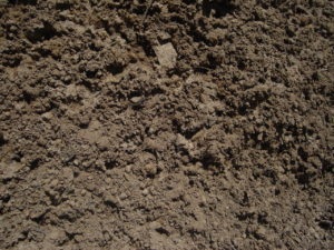 пескогрунт цена
