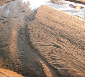 Песок речной купить