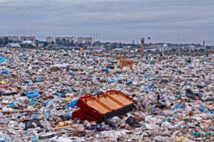 полигон с мусором вывоз